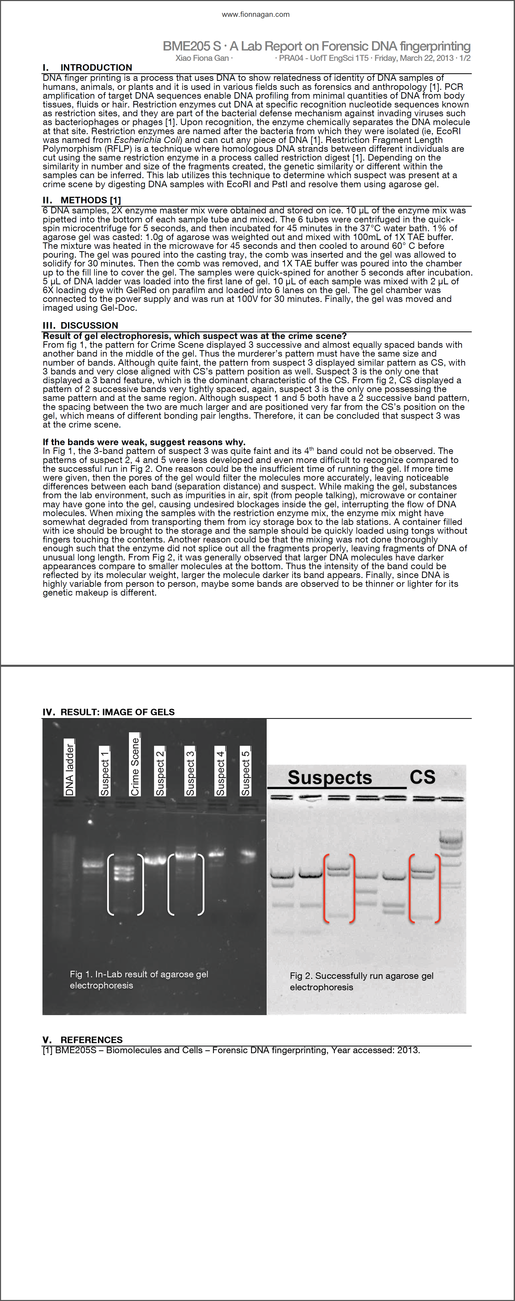 forensic lab report